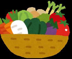 toushitu-diet-yasai